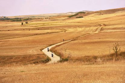 Ciclistas atravessam a planície de Burgos, no chamado Caminho Francês.