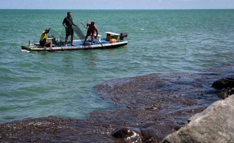 Pescadores recolhem óleo na praia de Janga, em Paulista, Pernambuco.