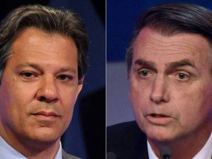 Haddad e Bolsonaro.