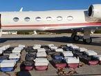 Un ciudadano español ha sido detenido este miércoles en un aeropuerto brasileño a bordo de un vuelo privado en el que la policía federal ha encontrado 1.304 kilos de cocaína. El español, cuya identidad no ha sido divulgada, era el único pasajero del avión que los agentes han abordado en Recife, en el nordeste del país. Tanto él, como los cuatro tripulantes, todos turcos, han sido detenidos. La droga estaba empaquetada en 24 maletas que, según una nota de la policía, pertenecían al español.