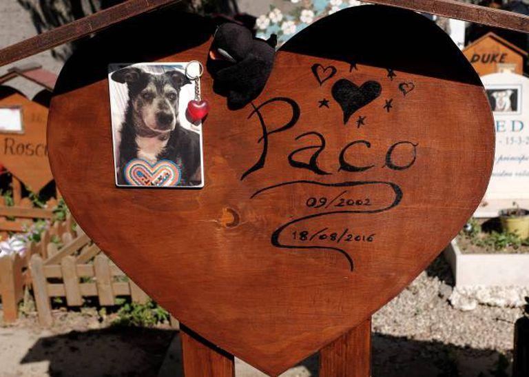 Cemitério de animais de Casa Rosa (Itália). ALBERTO PIZZOLI/AFP/Getty Images