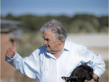 José Mujica, de presidente a estrela midiática do Uruguai