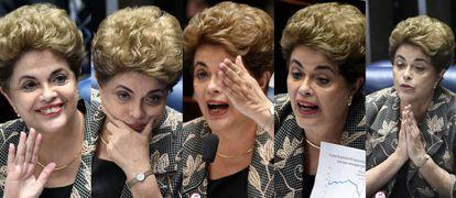 Dilma Rousseff no Senado.