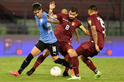 O jogador venezuelano Tomás Rincón (c) disputa a bola com Facundo Torres, do Uruguai, no dia 8 de junho em Caracas.