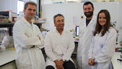 A equipe da Universidade de Zaragoza, que desenvolveu uma das vacinas contra a tuberculose que se pretende testar contra o coronavírus. Da direita para a esquerda, Dessislava Marinova, Nacho Aguiló, Carlos Martín e Jesús Gonzalo.