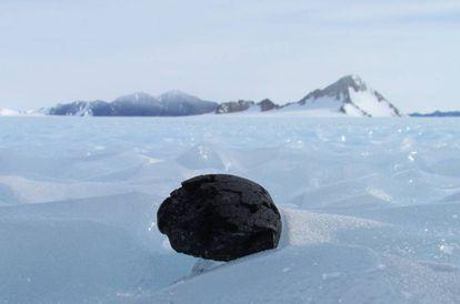 Um meteorito encontrado na Antártida, em uma imagem de arquivo.