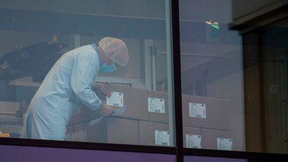 Funcionários da Pfizer nas instalações da empresa em Puurs (Bélgica), nesta quinta-feira.