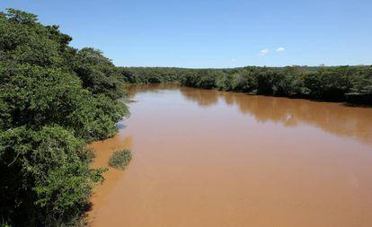 Imagem da água escurecida do Rio São Francisco, durante expedição realizada pela ONG.
