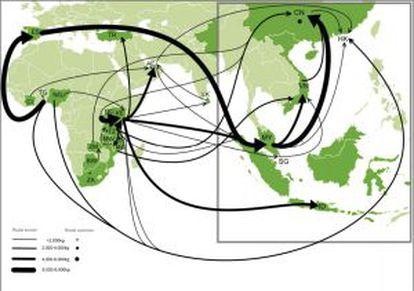 Rotas dos grandes envios de marfim de 2012-2013, segundo a organização Traffic