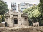 Mara, elefante asiático de 54 años que ha pasado la mayor parte de su vida en cautiverio, se prepara para su siesta diaria en el Ecoparque de Buenos Aires.
