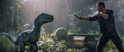 Chris Pratt, em uma imagem de 'Jurassic World: Reino Ameaçado'.