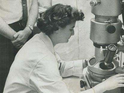 June Almeida trabalhando com um microscópio em 1956.