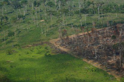 Foto aérea de um pedaço da floresta Amazônica desmatada no estado de Rondônia, em 28 de setembro.