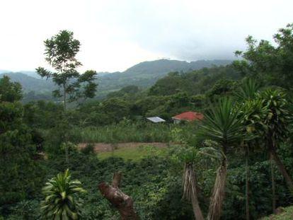Costa Rica quer ser neutra em carbono até 2021.