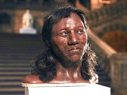 """Foto fornecida pelo Museu de História Natural de Londres mostra o rosto do chamado """"Homem de Cheddar""""."""