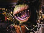 Audrey II, a planta carnívora de 'A Pequena Loja dos Horrores' (1986);