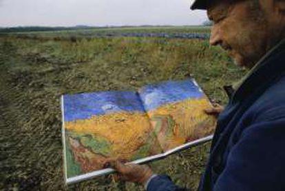 """Campos de Auvers-sur-Oise, que Van Gogh pintou em julho de 1890 em sua obra 'Campo de trigo com corvos"""", uma das últimas pinturas do artista."""