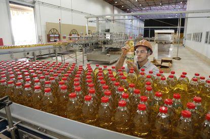Produção de óleo de soja no Brasil: exportação de industrializados melhora as receitas do país e amplia tanto a cadeia produtiva quantos os empregos.