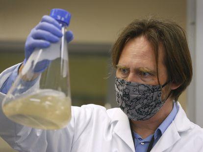 Um pesquisador do laboratório norte-americano Verndari, que trabalha em uma vacina para o coronavírus.   07/05/2020 ONLY FOR USE IN SPAIN