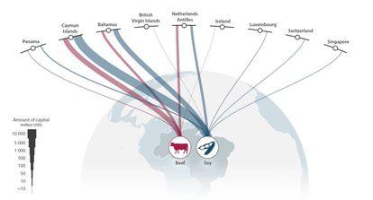 Fluxo de capital estrangeiro procedente de vários paraísos fiscais para os setores pecuarista e sojicultor do Brasil