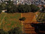 Aerial view of a burial at the Vila Formosa cemetery during the COVID-19 coronavirus pandemic, in Sao Paulo, Brazil, on June 21, 2020. - The novel coronavirus has killed at least 464,423 people worldwide since the outbreak began in China last December, being Brazil Latin America's worsthit country with 49,976 deaths from 1,067,579 cases. (Photo by Miguel SCHINCARIOL / AFP)