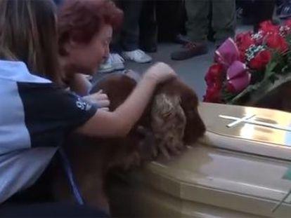 O animal de estimação de Andrea Cossu não parou de farejar seu caixão durante seu enterro