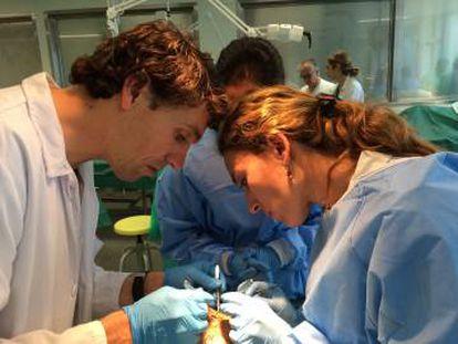 Cirurgiões com experiência tentam reduzir sua margem de erro praticando com cadáveres.