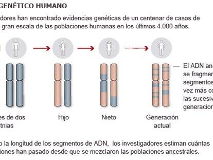 Atlas Genético Humano (UCL, Oxford Instituto Max Planck).