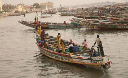 Pirogas no rio Senegal, em Saint Louis.