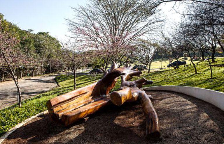 Uma das obras de Hugo França no Parque das Cerejeiras.
